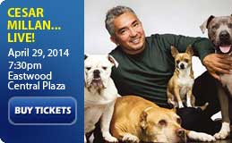 Cesar Millan Live at Eastwood
